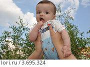 Маленький ребенок на прогулке на улице (2012 год). Редакционное фото, фотограф Светлана Пирожук / Фотобанк Лори