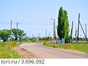 Купить «Железнодорожный переезд, оборудованный светофором, посреди поля», фото № 3696092, снято 22 мая 2012 г. (c) Анна Мартынова / Фотобанк Лори