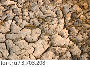 Сухая земля с трещинами. Стоковое фото, фотограф Константин Примачук / Фотобанк Лори