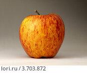 Яблоко на сером фоне. Стоковое фото, фотограф Денис Антонов / Фотобанк Лори