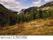 Купить «Горная долина. Восточный Саян», фото № 3707056, снято 3 сентября 2011 г. (c) Sergey / Фотобанк Лори