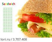Сэндвич с мясом, сыром и помидорами. Стоковое фото, фотограф Лариса Кривошапка / Фотобанк Лори