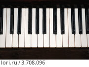 Клавиши фортепиано. Стоковое фото, фотограф Ольга А. / Фотобанк Лори