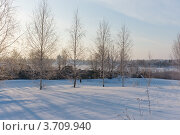 Купить «Морозное мартовское утро в Суздале», эксклюзивное фото № 3709940, снято 11 марта 2012 г. (c) Павел Широков / Фотобанк Лори