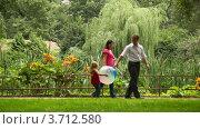 Купить «Семья с ребенком держащим мяч медленно идет по парку», видеоролик № 3712580, снято 28 октября 2010 г. (c) Losevsky Pavel / Фотобанк Лори