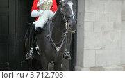 Купить «Солдат сидит на лошади», видеоролик № 3712708, снято 6 декабря 2010 г. (c) Losevsky Pavel / Фотобанк Лори