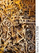 Купить «Много разных фигурных ключей», фото № 3713708, снято 8 июля 2012 г. (c) Николай Винокуров / Фотобанк Лори