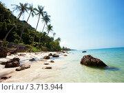 Купить «Вид на тропический пляж», фото № 3713944, снято 8 февраля 2012 г. (c) Эдуард Стельмах / Фотобанк Лори