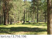 Купить «Палаточный лагерь на горном курорте «Архыз». КЧР», эксклюзивное фото № 3716196, снято 21 июля 2012 г. (c) Rekacy / Фотобанк Лори