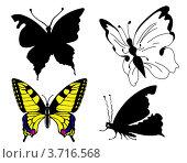 Купить «Четыре бабочки на белом фоне», иллюстрация № 3716568 (c) Сергей Яковлев / Фотобанк Лори