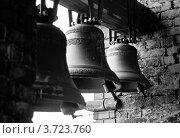 Купить «Колокола церкви», фото № 3723760, снято 21 апреля 2012 г. (c) Сурикова Ирина / Фотобанк Лори