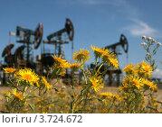 Добыча нефти, фокус на переднем плане. Стоковое фото, фотограф Ильдар Ахметов / Фотобанк Лори