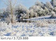 Купить «Зимний день на реке за городом», фото № 3729888, снято 7 декабря 2010 г. (c) Татьяна Кахилл / Фотобанк Лори