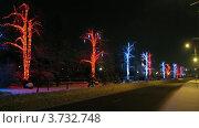 Купить «Раскрашенные огоньками деревья на аллее у набережной , таймлапс», видеоролик № 3732748, снято 20 марта 2011 г. (c) Losevsky Pavel / Фотобанк Лори