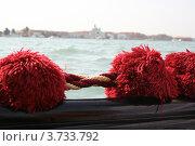 Помпоны на гондоле (2011 год). Стоковое фото, фотограф Овсянникова Екатерина / Фотобанк Лори