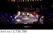 Купить «Боксерский матч в освещенном зале Барвиха LUXURY VILLAGE», видеоролик № 3738788, снято 16 июля 2011 г. (c) Losevsky Pavel / Фотобанк Лори