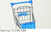Купить «Маленькая игрушечная корзина покупателя», видеоролик № 3739144, снято 6 августа 2011 г. (c) Losevsky Pavel / Фотобанк Лори