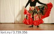 Купить «Цыганка в широкой красной юбке танцует на сцене», видеоролик № 3739356, снято 7 июня 2011 г. (c) Losevsky Pavel / Фотобанк Лори