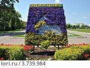 Купить «Цветочное панно в парке города Одинцово. Московская область», эксклюзивное фото № 3739984, снято 4 июля 2012 г. (c) lana1501 / Фотобанк Лори