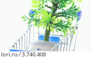 Купить «Горшок с искусственным цветком в игрушечной покупательской корзине на белом фоне», видеоролик № 3740408, снято 15 августа 2011 г. (c) Losevsky Pavel / Фотобанк Лори