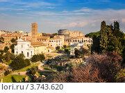 Купить «Форум и Колизей в Риме», фото № 3743620, снято 8 марта 2012 г. (c) Sergey Borisov / Фотобанк Лори