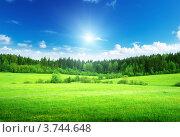 Купить «Зеленое поле под голубым небом», фото № 3744648, снято 4 июня 2012 г. (c) Iakov Kalinin / Фотобанк Лори