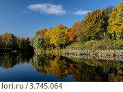 Золотая осень. Стоковое фото, фотограф Vladimir Pen / Фотобанк Лори