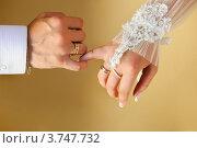 Руки молодоженов крупным планом. Стоковое фото, фотограф Алексей Казнадей / Фотобанк Лори
