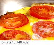 Яйца с помидорами. Стоковое фото, фотограф Денис Антонов / Фотобанк Лори