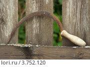 Купить «Старый серп на фоне деревянного деревенского забора», фото № 3752120, снято 12 августа 2012 г. (c) Дмитрий Грушин / Фотобанк Лори