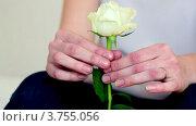 Купить «Юная девушка с белой розой в руках сидит у стены», видеоролик № 3755056, снято 6 сентября 2011 г. (c) Losevsky Pavel / Фотобанк Лори