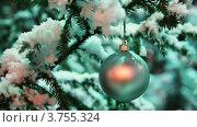 Купить «Стеклянный шар серебристого цвета висит на заснеженной ели в зимнем лесу», видеоролик № 3755324, снято 25 ноября 2011 г. (c) Losevsky Pavel / Фотобанк Лори