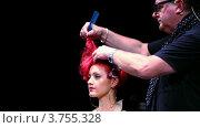 Купить «Тим Хартли расчесывать волосы модели на Davines Hair Show 2010», видеоролик № 3755328, снято 3 декабря 2011 г. (c) Losevsky Pavel / Фотобанк Лори