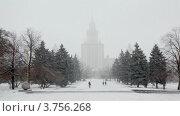 Парк у МГУ в снегопад (2011 год). Стоковое видео, видеограф Losevsky Pavel / Фотобанк Лори
