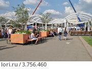 Купить «Парк Горького. Москва», эксклюзивное фото № 3756460, снято 12 августа 2012 г. (c) lana1501 / Фотобанк Лори