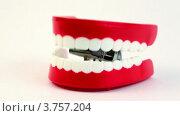 Купить «Игрушечная заводная челюсть клацает зубами  на белом фоне», видеоролик № 3757204, снято 27 октября 2011 г. (c) Losevsky Pavel / Фотобанк Лори