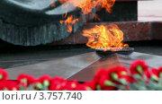 Купить «Цветы у Вечного огня на могиле Неизвестного солдата», видеоролик № 3757740, снято 6 декабря 2011 г. (c) Losevsky Pavel / Фотобанк Лори