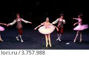 Купить «Два мальчика, три девочки танцуют на концерте», видеоролик № 3757988, снято 26 декабря 2011 г. (c) Losevsky Pavel / Фотобанк Лори