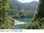Купить «На озере Рица», фото № 3759120, снято 25 июля 2012 г. (c) Александр Бутенко / Фотобанк Лори