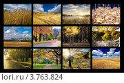 Купить «Коллаж из осенних фотографий», фото № 3763824, снято 19 июля 2019 г. (c) Liseykina / Фотобанк Лори