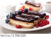 Купить «Шоколадные эклеры со свежими ягодами», фото № 3766020, снято 8 декабря 2011 г. (c) Лисовская Наталья / Фотобанк Лори