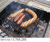 Купить «Приготовление сосисок и колбасок на гриле», эксклюзивное фото № 3768280, снято 2 июля 2012 г. (c) lana1501 / Фотобанк Лори