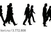 Купить «Силуэты на белом фоне. Толпа людей», видеоролик № 3772808, снято 2 июня 2008 г. (c) Losevsky Pavel / Фотобанк Лори