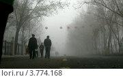 Купить «Люди гуляют по туманной улице, таймлапс», видеоролик № 3774168, снято 16 января 2012 г. (c) Losevsky Pavel / Фотобанк Лори