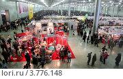 Купить «Посетители и участники на Международном Собачьем Шоу Евразии 2011», видеоролик № 3776148, снято 6 февраля 2012 г. (c) Losevsky Pavel / Фотобанк Лори