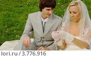 Жених и невеста в свадебном платье сидят на зеленой лужайке и пристегивают свои руки наручниками. Стоковое видео, видеограф Losevsky Pavel / Фотобанк Лори