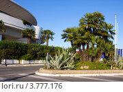 Купить «Дворец Конгрессов, Лазурное побережье франции, Канны», фото № 3777176, снято 13 июня 2010 г. (c) ElenArt / Фотобанк Лори