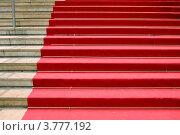 Купить «Красный ковер, дворца популярного кинофестиваля в Каннах, Франция», фото № 3777192, снято 13 июня 2010 г. (c) ElenArt / Фотобанк Лори