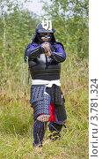 Купить «Самурай в доспехах в боевой стойке с мечом», фото № 3781324, снято 25 августа 2012 г. (c) Иван Марчук / Фотобанк Лори