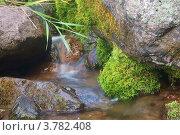 Горный ручей. Стоковое фото, фотограф Антон Жигаев / Фотобанк Лори